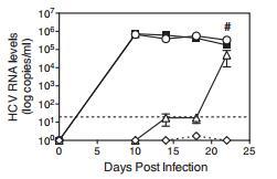 Recombinant Human Anti-HCV E2 Antibody (MRCT10 v362) - Creative Biolabs